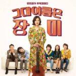 韓国映画愛の旋律