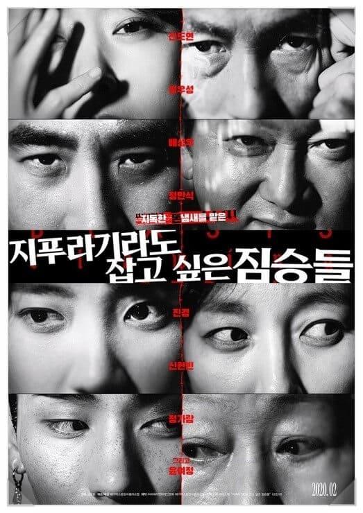 韓国映画藁にもすがる獣たち